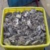 长沙锡渣回收公司、有铅废焊锡丝块灰、无铅环保锡线条收购厂家