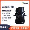 泵闸一体化设备厂家_全贯流闸门泵参数_湿定子闸门泵